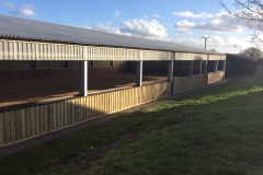 Equine-Construction---Dressage-Yard---Sussex