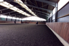 Equine Construction - Indoor Arena 5