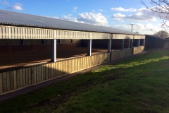 Equine Construction - Indoor Arena 4